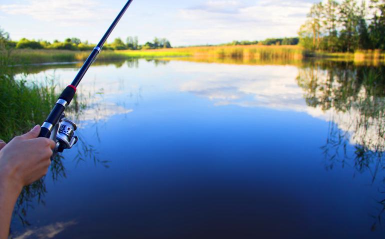 Fishing-Marketing